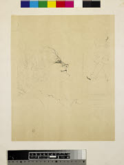 00045274001